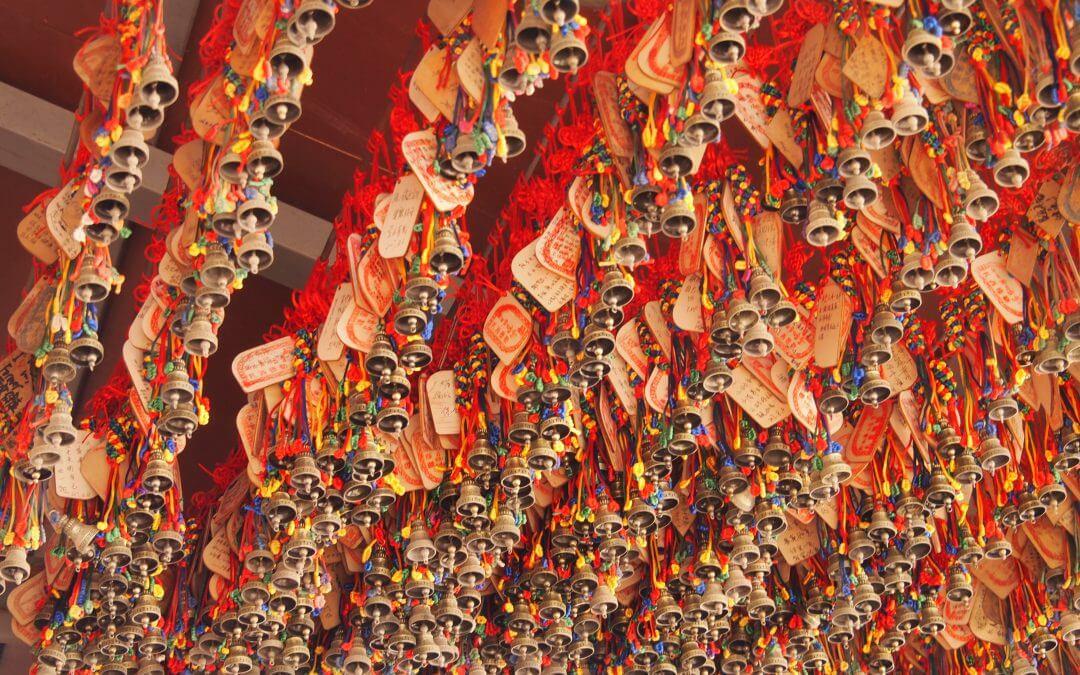 איך לזכור צמחים רפואה סינית צמחי מרפא
